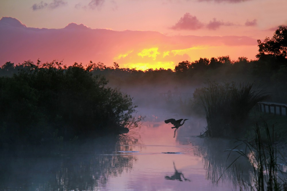 Heading to the Everglades? Check Out Our Wildwood Motorhomes in King County First!